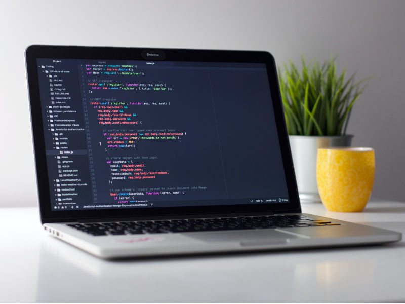 Web-Entwicklung und Frontend-Development